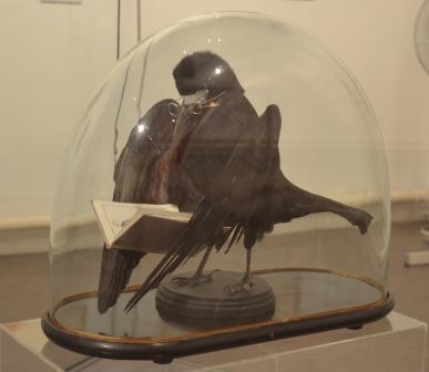 Rook reading a sermon at Tunbridge Wells Museum Image Rachael Hale