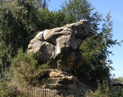Toad Rock at Rusthall Image Rachael Hale